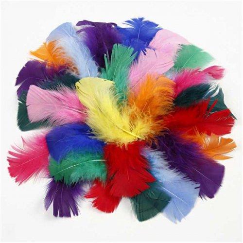 Peříčka, vel. 7-8 cm, různé barvy, 50g - CC51661_a.jpg