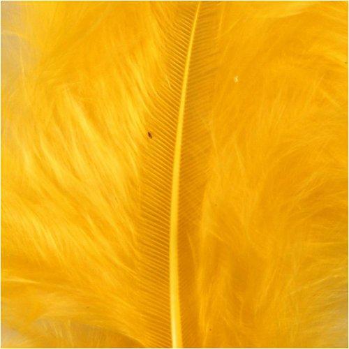 Peří žluté - CC51693_b.jpg