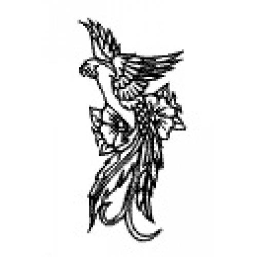 Přenášecí archy s motivem - Papoušek