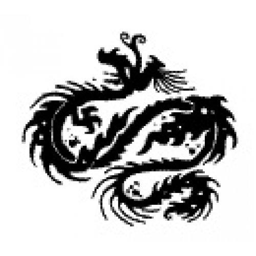 Přenášecí archy s motivem - Drak