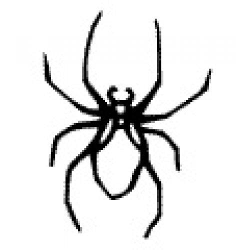 Přenášecí archy s motivem - Pavouk