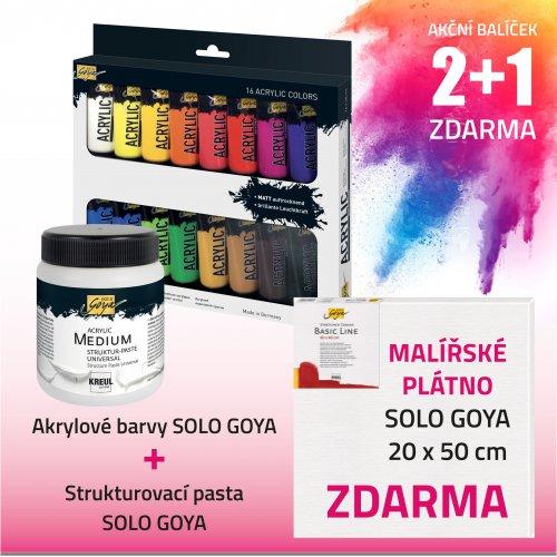 Akční balíček č. 1 - barvy + pasta + plátno