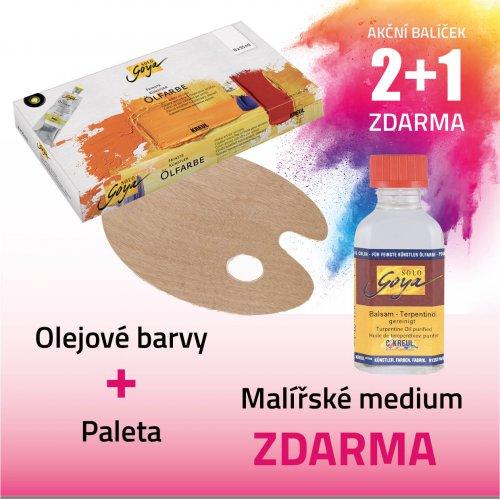 Akční balíček č. 7 - barvy + paleta + médium
