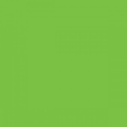 Akrylová barva matná 20 ml ZELENÁ JABLKO - PE77_1.JPG