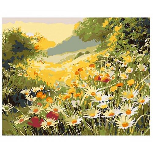 Malování podle čísel - LETNÍ LOUKA na rámu 40 x 50 cm