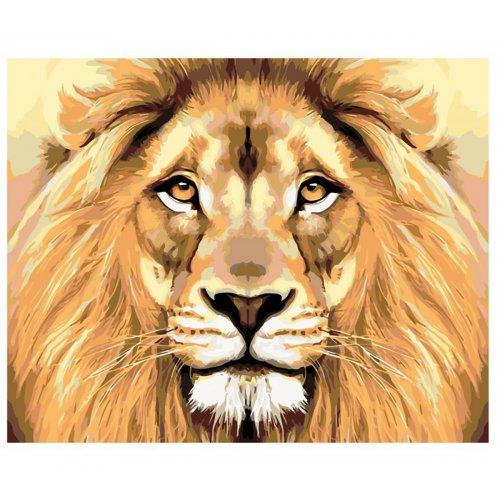 Malování podle čísel - LVÍ POHLED na rámu 40 x 50 cm
