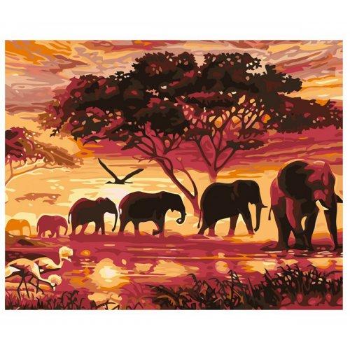 Malování podle čísel - SLONI na rámu 40 x 50 cm