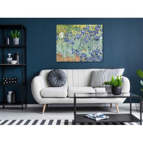 Malování podle čísel - KOSATCE - VAN GOGH 50x40 cm plátno na rámu - 2623231.png