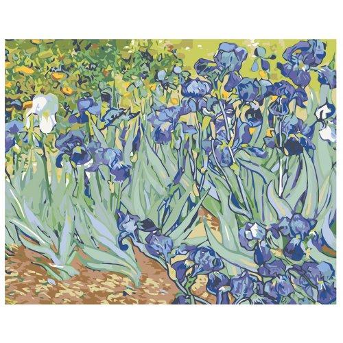 Malování podle čísel - KOSATCE - VAN GOGH 50x40 cm plátno na rámu