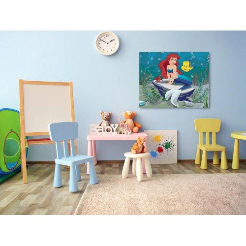 Malování podle čísel - MALÁ MOŘSKÁ VÍLA 100x80 cm plátno na rámu - 597271.png