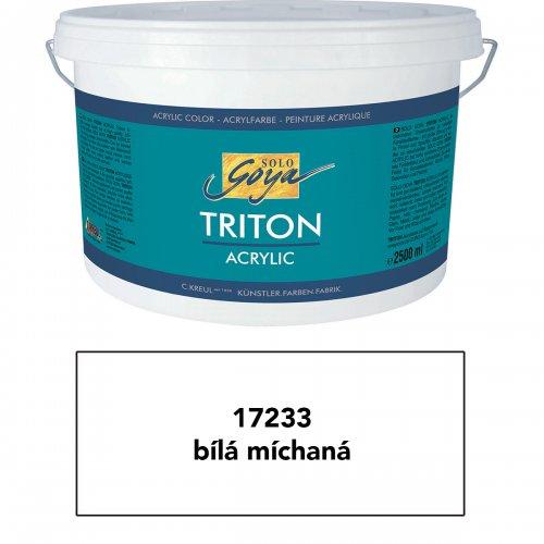 Akrylová barva TRITON SOLO GOYA 2500 ml bílá míchaná