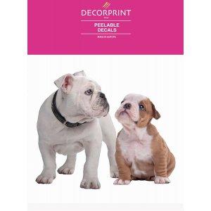 Obtisky dekorační DECORPRINT